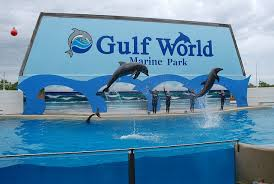 Gulf World Marina